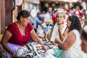 Central America microloans market