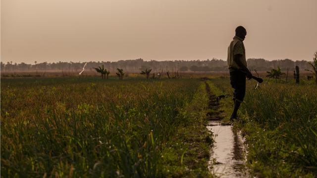 man in field in burkina faso